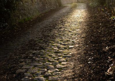 EdinburghCobbles